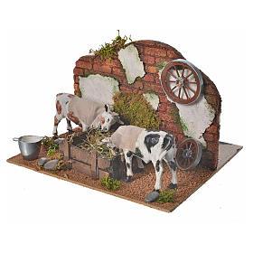 Vaches au mangeoire 10 cm crèche napolitaine en mouvement s3