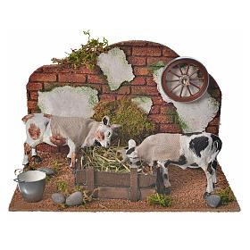 Mucche alla mangiatoia 10 cm ambientazione presepe movimento s1