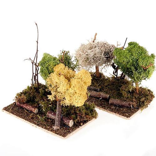 Set alberelli con licheni presepe fai da te 1