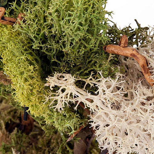Set alberelli con licheni presepe fai da te 4