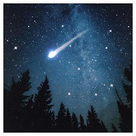 Quadro Natalizio bosco innevato di notte illuminato 40x60 cm s2