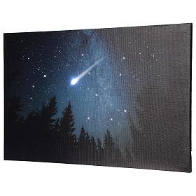 Quadro Natalizio bosco innevato di notte illuminato 40x60 cm s3
