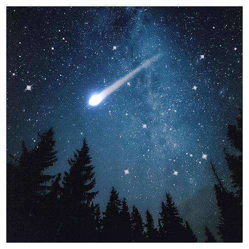 Quadro Natalizio bosco innevato di notte illuminato 40x60 cm 2