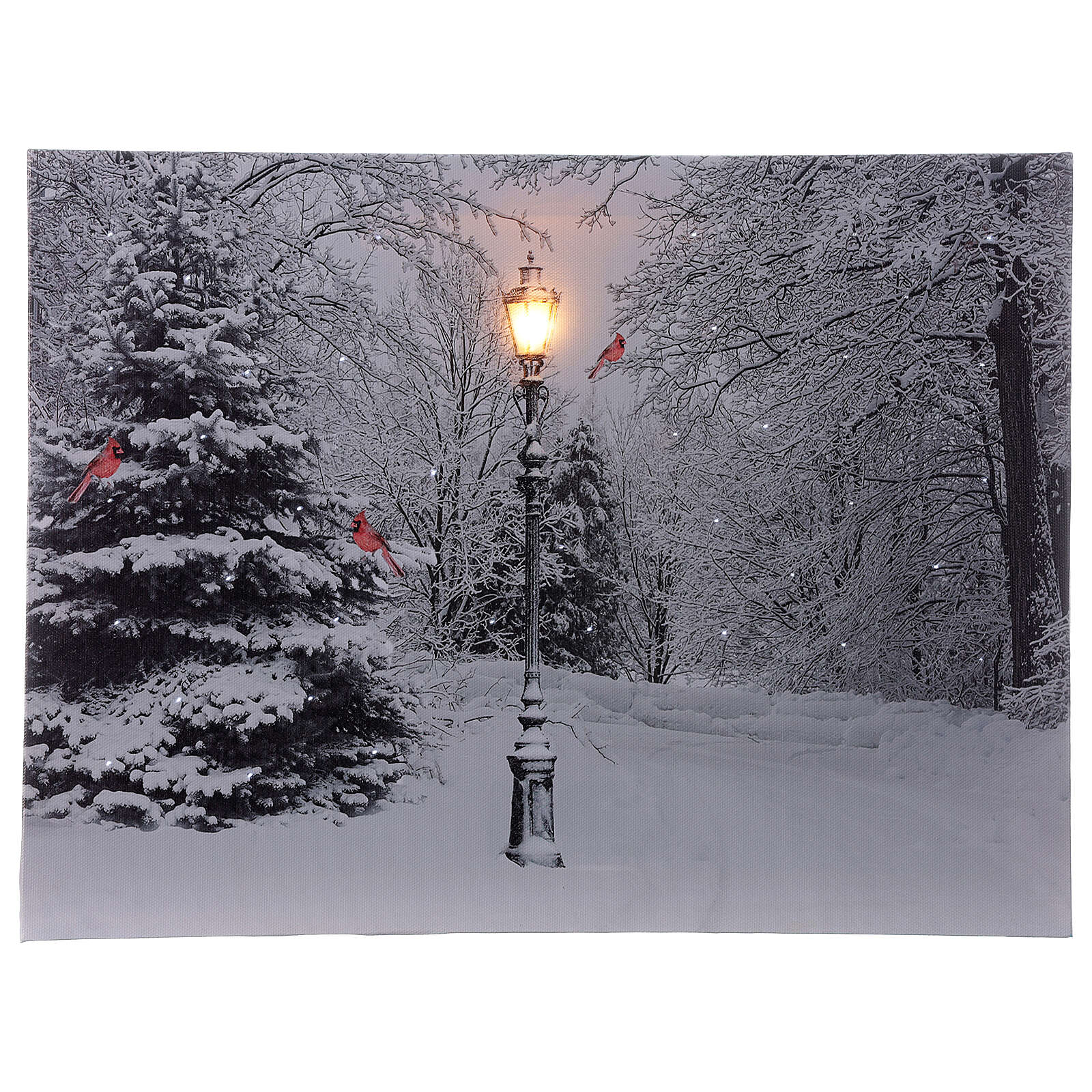 Cuadro luminoso fibra óptica paisaje nevado blanco negro 30x40 cm 3