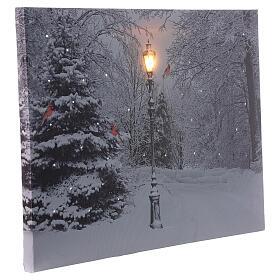 Quadro luminoso fibra ottica paesaggio innevato bianco nero 30x40 cm s2
