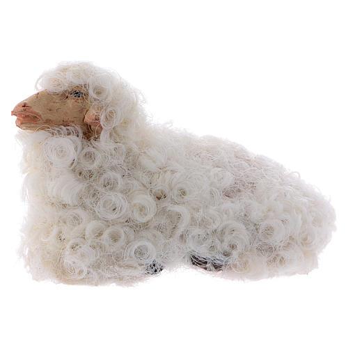 Pecorella accovacciata 12 cm colori misti 1