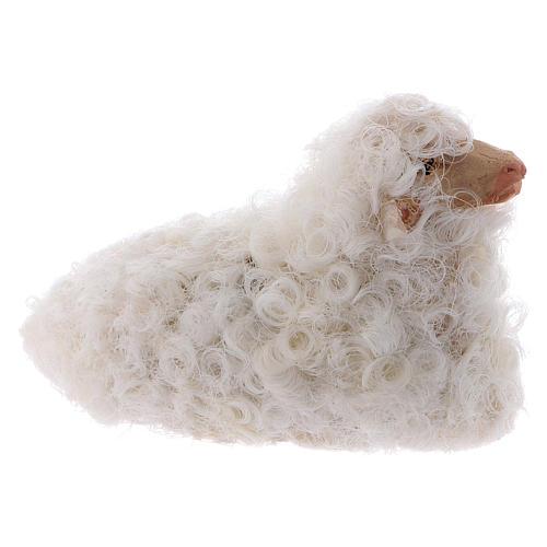 Pecorella accovacciata 12 cm colori misti 2