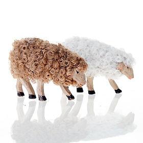 Pecorella testa bassa 12 cm colori misti s2