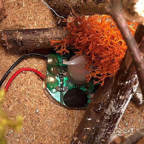 Fuoco presepe a batteria  ambientazione con palizzata 15X15X15 3