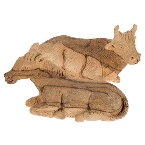 Szopka komplet z grotą 14 cm drewno oliwne Betlejem 8