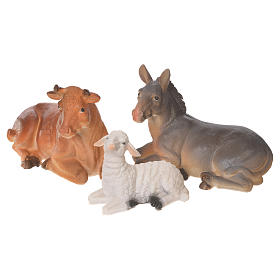 Complete nativity set in multicoloured resin, 11 figurines 31cm s8
