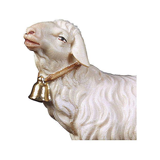 Pecora con campanella presepe Original legno dipinto Valgardena 10 cm 4