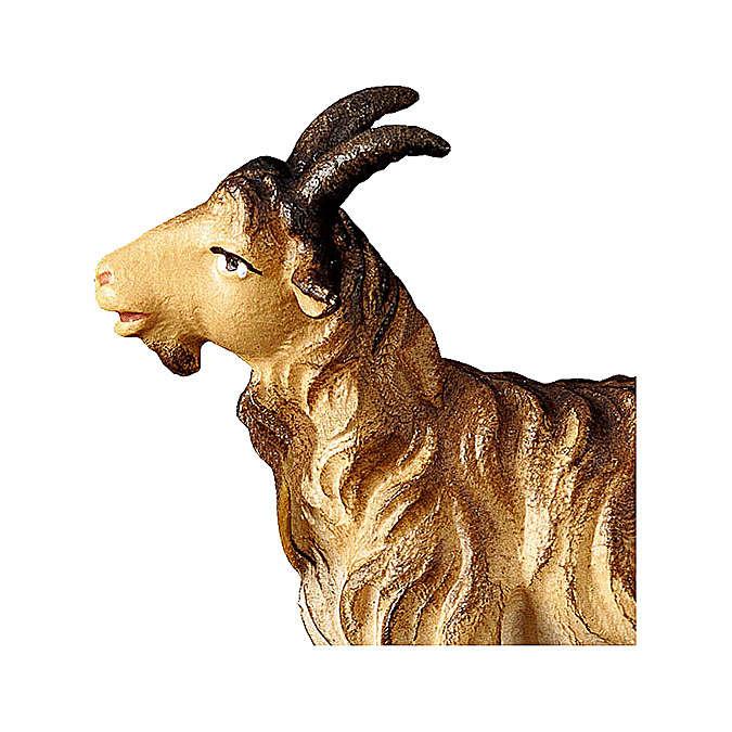 Capra presepe Original legno dipinto Valgardena 12 cm 4