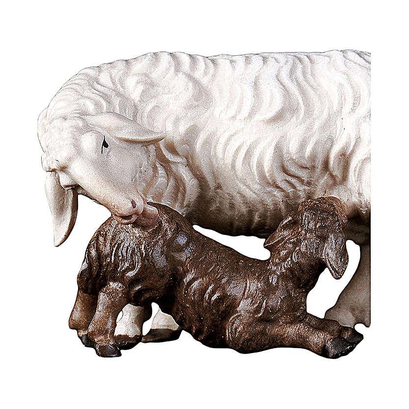 Pecora con agnello allattante presepe Original legno Valgardena 10 cm 4