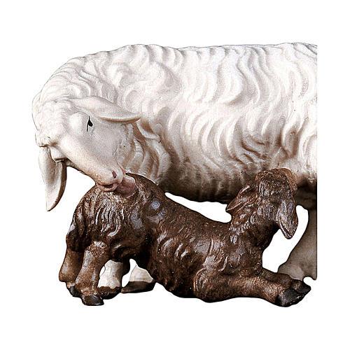 Pecora con agnello allattante presepe Original legno Valgardena 10 cm 2