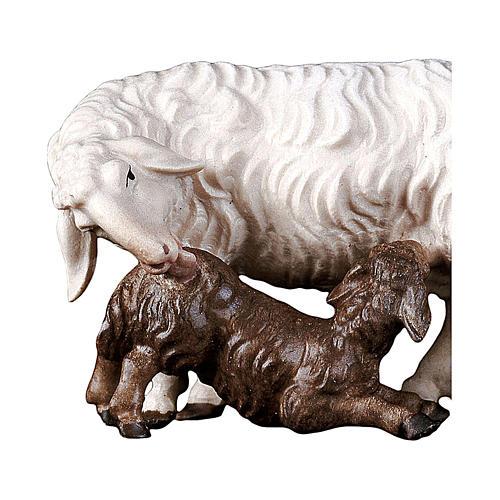 Pecora con agnello allattante presepe Original legno Valgardena 12 cm 2