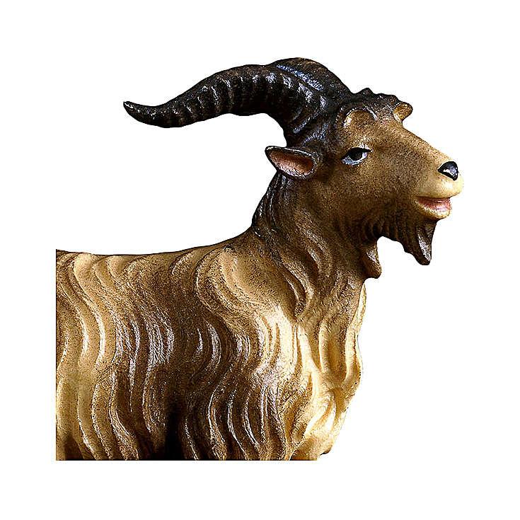 Caprone presepe Original legno dipinto Valgardena 10 cm 4