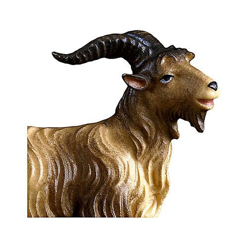 Caprone presepe Original legno dipinto Valgardena 12 cm 2
