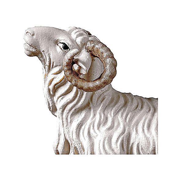 Montone presepe Original legno dipinto Valgardena 10 cm 4
