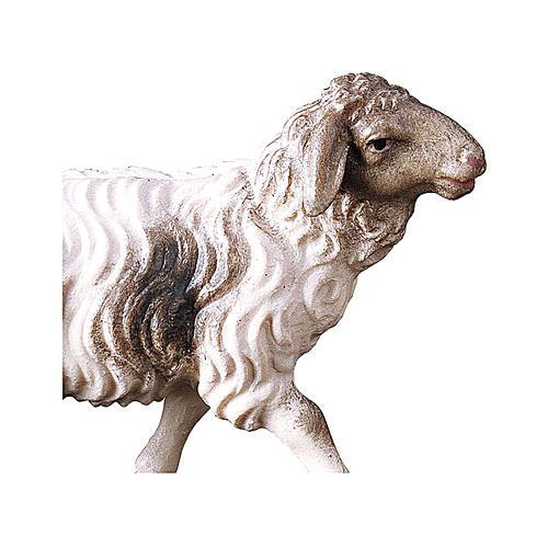 Pecora macchiata che corre presepe Original legno dipinto Valgardena 10 cm 2