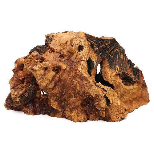 Natività ulivo di Betlemme in stalla forma irregolare 20x30x20 cm 5