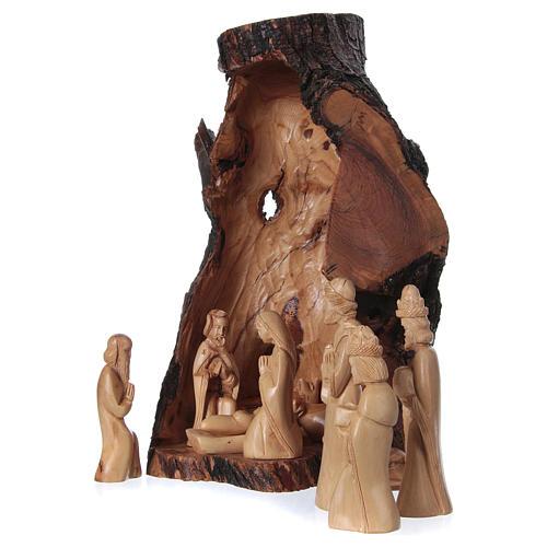 Presepe completo ulivo di Betlemme 21 cm in grotta naturale 45x30x30 cm 3