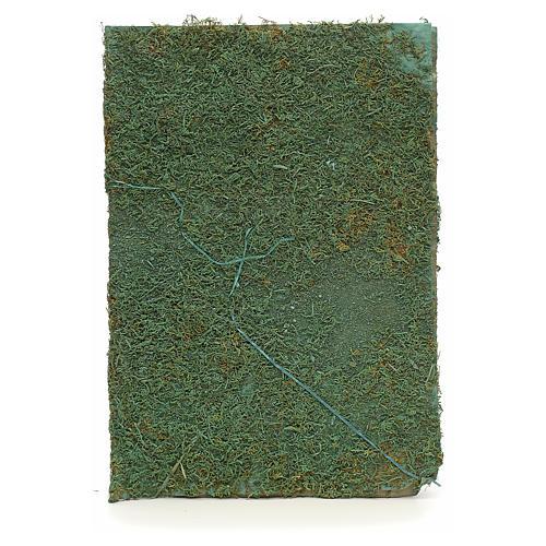 Hoja con musgo verde para  el belén 1