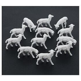 Schafe für Krippe 12 Stücke 8/10cm s2
