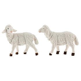 Pecore presepe plastica bianca 4 pz. presepe altezza media 12 cm s2
