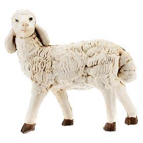 Nativity scene figurines, plastic sheep, 4 pieces 20cm s2