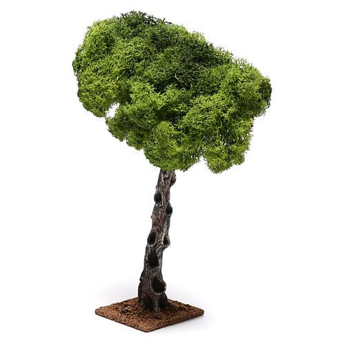 Mini chêne crèche Noel 3