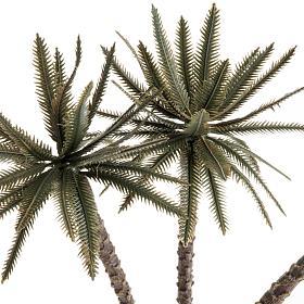 Palma tripla presepe s2