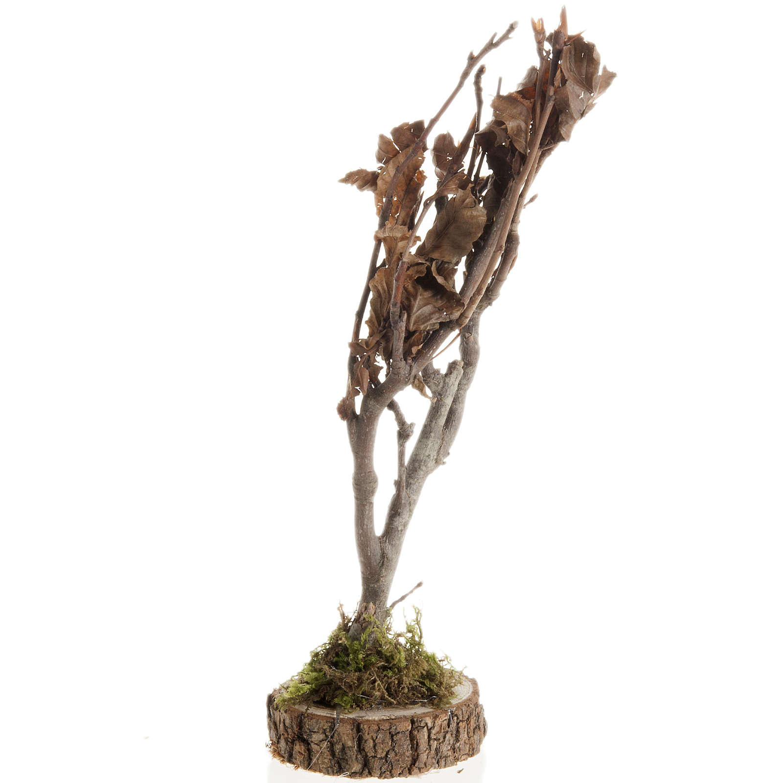 Nativity accessory, dry tree 4