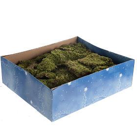Mousse végétale, Lichens, Arbres, Pavages: Mousse végétale pour crèche 500 gr
