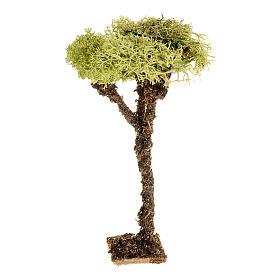 Nativity accessory, tree with lichen 10cm s1