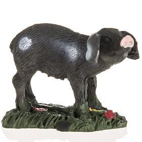 Nativity figurines, black pig in resin, 10cm s1