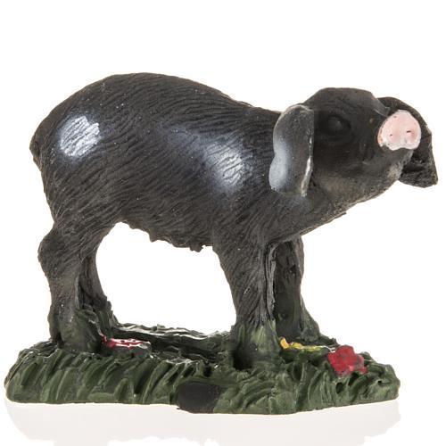 Nativity figurines, black pig in resin, 10cm 1