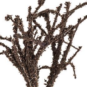 Mini arbre dépouillé h 15 cm s2