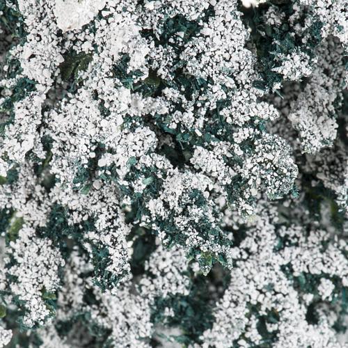 Árbol con nieve H de 15 cm 3