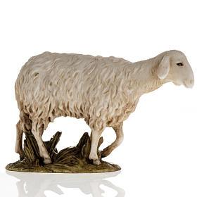 Animales para el pesebre: Oveja Landi para Belén de altura media 11cm