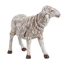 Owca stojąca szopka Fontanini 45 cm s2
