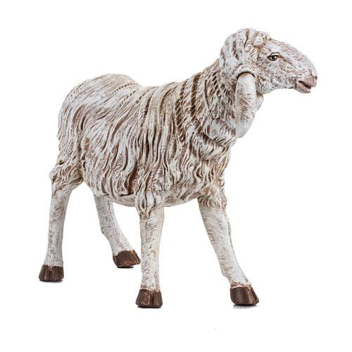 Owca stojąca szopka Fontanini 45 cm 2