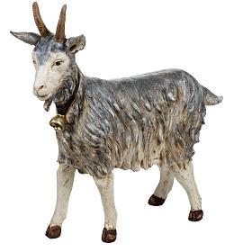 Cabra de pie 125 cm. pesebre Fontanini s1