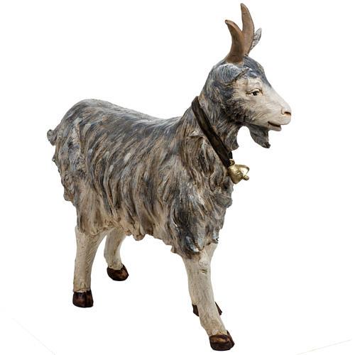 Cabra de pie 125 cm. pesebre Fontanini 4