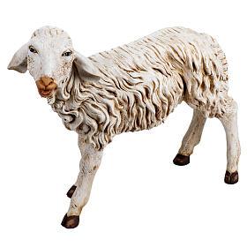Zwierzęta do szopki: Owca stojąca 125 cm żywica Fontanini