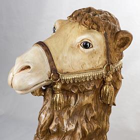 Cammello seduto 125 cm presepe Fontanini s2