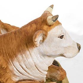 Buey para pesebre Fontanini 65 - 85 cm s5