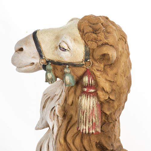 Wielbłąd szopka Fontanini 65 cm żywica 5