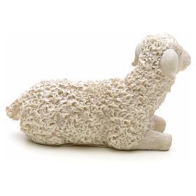Nativity figurine, sheep in resin 14cm s2