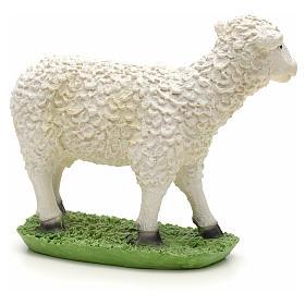 Nativity figurine, sheep in resin 24cm s2